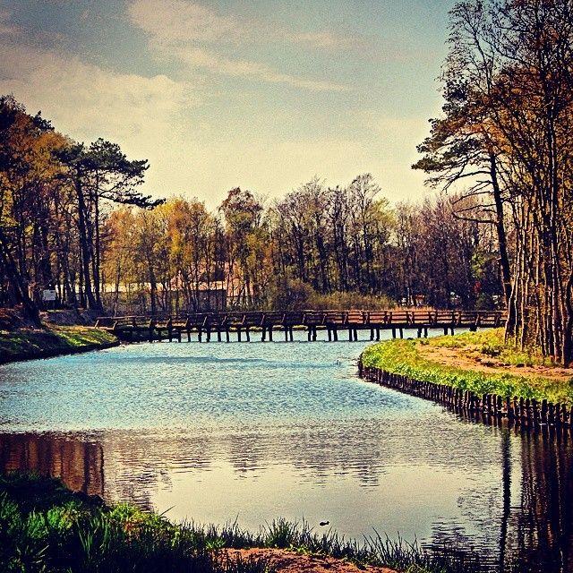 #park #łeba #poland #bałtyk #we_love_poland #kochamy_lebe