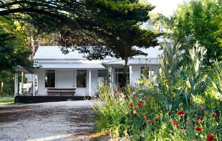 Natasha Morgan's Oak and Monkey Puzzle in Spargo Creek - a divine Australian country farmhouse as featured in The Design Files