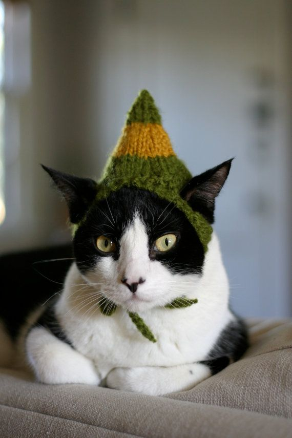 Buddy the Elf Cat Hat, 18Elf Hats, Cat Hats, Elf Cat, Funny, Christmas Cat, Cat Wear, Elves, Buddy The Elf, Knits