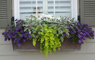 Great idea for my flower boxes!