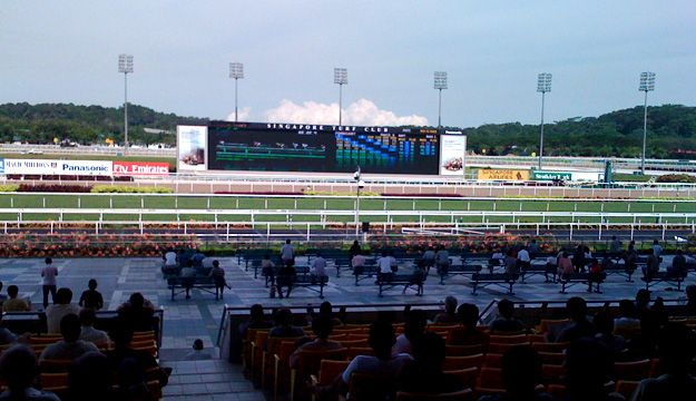 Singapore turf club is a must visit place if you are a fan of horse racing. The venue provides live horse racing and you can also watch live horse racing going around the world on the big screens.