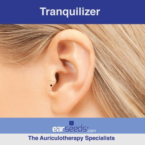12 best auriculotherapy images on pinterest acupressure calm that anxiety with the tranquilizer ear point fandeluxe Gallery
