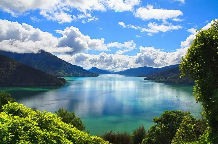 New Zealand - this didn't say where this location is, but my guess is it's within the Marlborough Sounds, uppermost part of the South Island.