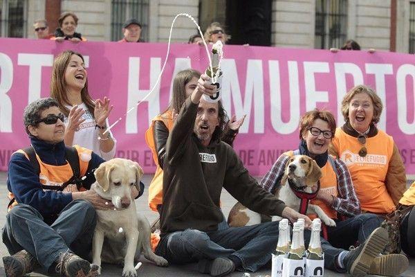 Vége az eutanáziának Madridban! Hatalmas lépés ez az állatvédelemért folyó harcban! Példaértékű!  #kutya #állatvédelem #madrid #eutanázia #kutyabaráthelyek