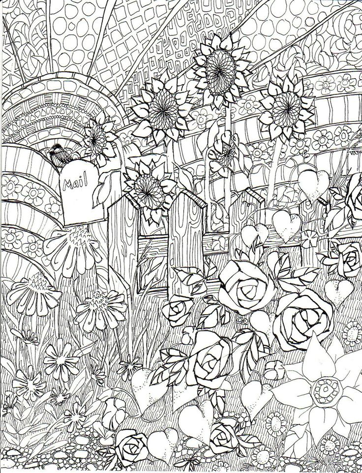 Late Summer Garden Coloring Page Ink Illustration Life