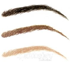1000 images about eyebrow tattoo on pinterest mac twig for Temporary eyebrow tattoos
