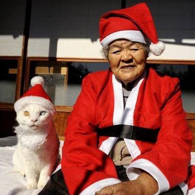 Miyoko Ihara has been taking photographs of her grandmother, Misao and her beloved cat Fukumaru since their relationship began in 2003. Their closeness has been captured through a series of lovely photographs. 12-18-12 / Miyoko Ihara