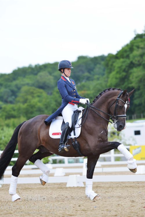 iamseboakley: Power. Charlotte Dujardin Riding Valegro in their lap of honor in…