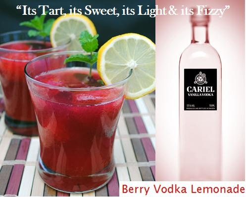 """It's tart, it's sweet, it's light & it's fizzy"" - it's a Berry Vodka Lemonade"". Our choice of Vodka Cariel Vanilla.  Serves 12: 1 small tub frozen strawberries in syrup, thawed, 1 can (12 oz.) frozen pink lemonade, thawed, 1 can (12 oz.) frozen cranberry juice, thawed, 6 cups water, 1 1/2 cups vodka, 2 cans (12 oz. each) lemon-lime soda, lemon slices, optional for garnish, mint, optional for garnish."