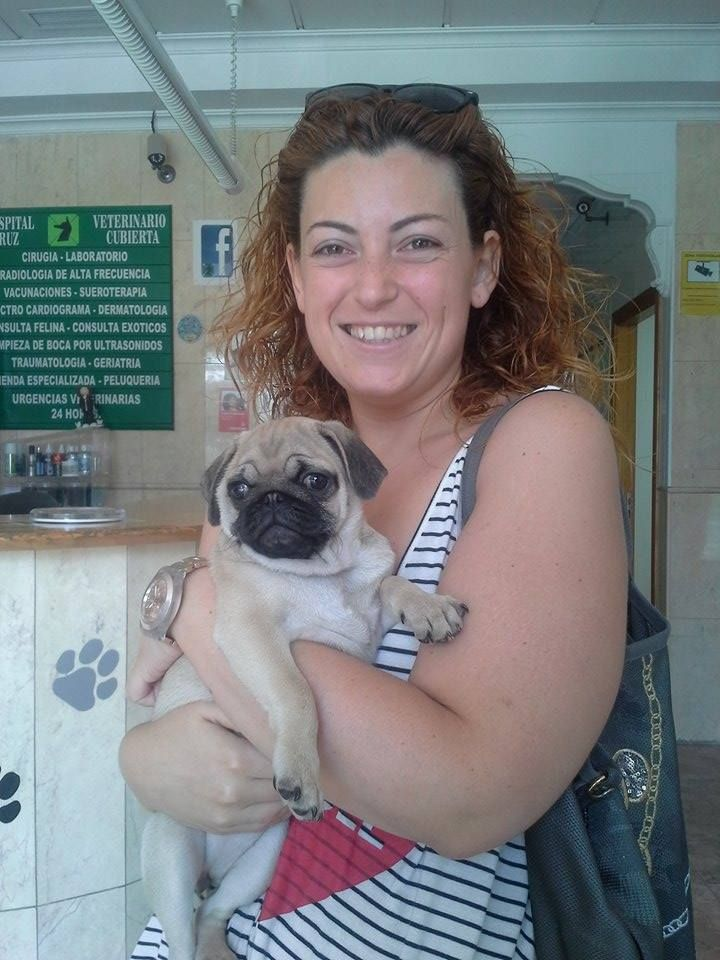 Verónica nos presenta a Pepa, esta carlino que viene a sus vacunitas de cachorro.