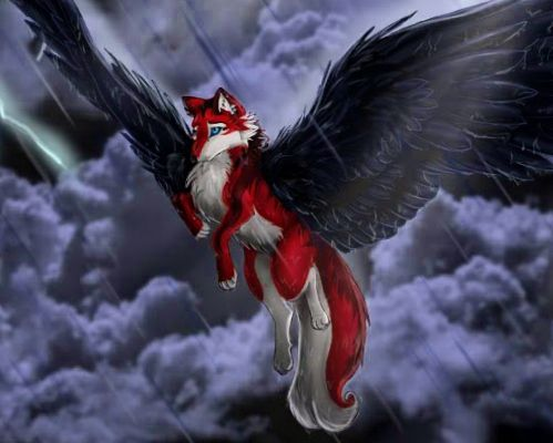 101 best WingedWolfClan images on Pinterest - photo#30