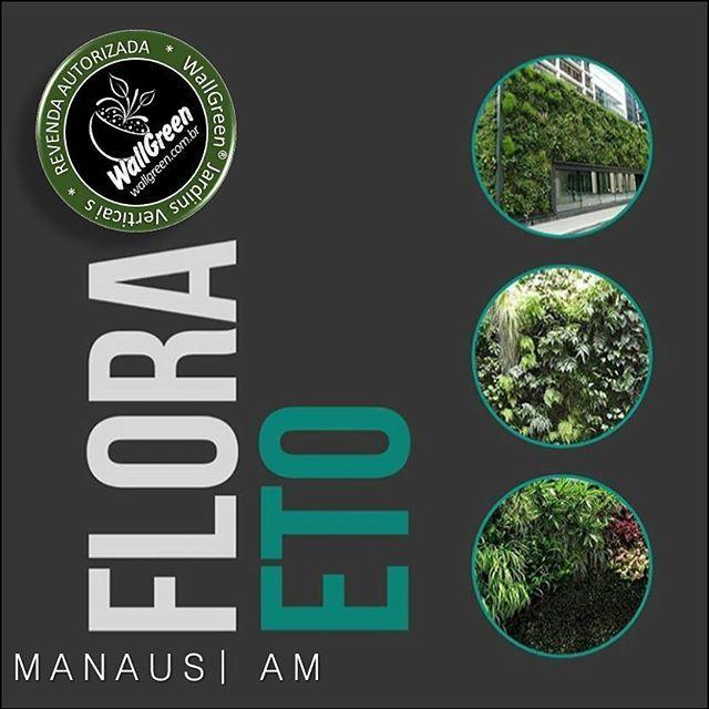 WG® | ...em Manaus AM 🐯 WallGreen® é com o pessoal especializado em atender com excelência os projetos mais sofisticados da capital Manauara, 🌱@floraetopaisagismo 🍃 👔REVENDA  AUTORIZADA 🎯 #wallgreen #jardimvertical #jardinagem #verticalgarden #jardinsverticais #landscape #landscaping #eco #ecofriendly #paisagismo #jardinesverticales #muroverde #paredeverde #greenwall #revendedor  #autorizado #madeinbrazil 🇧🇷