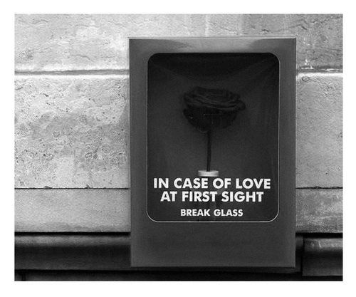 in case of love at first sight...