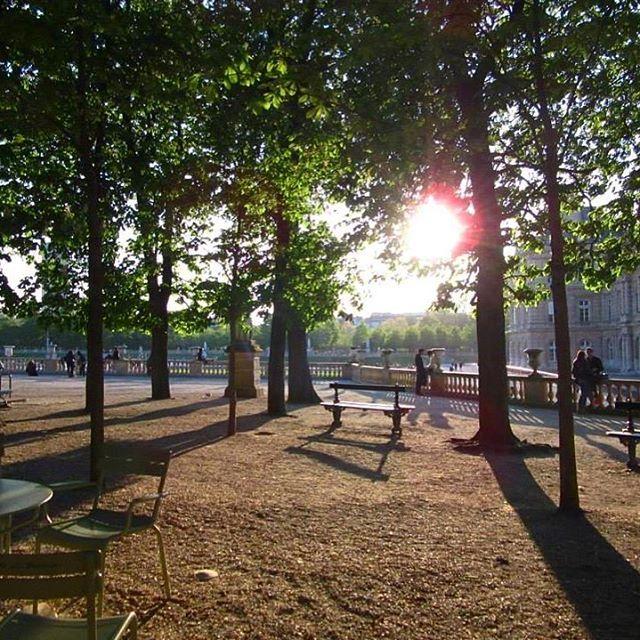 🇫🇷Jardin du Luxembourg PARIS  #spring #april #jardinduluxemburg #luxembourggardens #sunset #parissunset #parisfrance #jardin #garden #happydays  #thatview #instaparis  #instagood  #instatravel #instafrance  #visitfrance #instaview  #lovefrance  #beautiful #picturesque #magnifique  #love #travel #explore #live #melbournelifelovetravel  #holiday #fun #visitparis #scenery