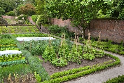 17 Best images about Vegetable Gardens French Potager on