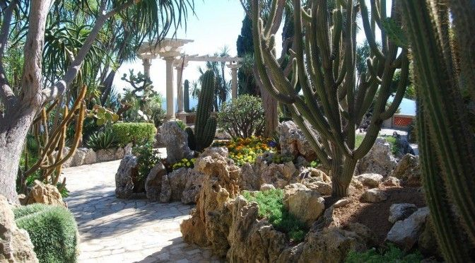 69 best jardin exotiques images on pinterest gardening landscaping and small gardens. Black Bedroom Furniture Sets. Home Design Ideas