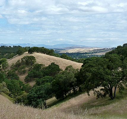 Mt. Diablo  #Cycling #cycle #bike #biking #travel #fitness #travelling #traveling #USA #american #America #US #road #roads #roadbike #roadbiking #trips #tripstotake #MioGlobal #MioLINK #MioALPHA #roadcycling #mountains #outdoors #nature #outdoorcycling #outdoor #wilderness #beautiful #beautifyldestinations #fitnesstravel