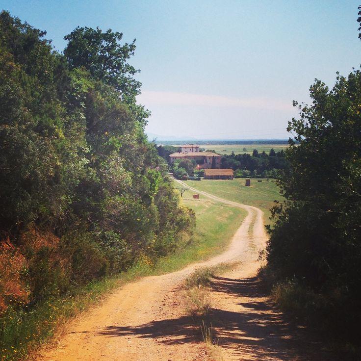 L'Andana vista dalla strada verso l'eremo