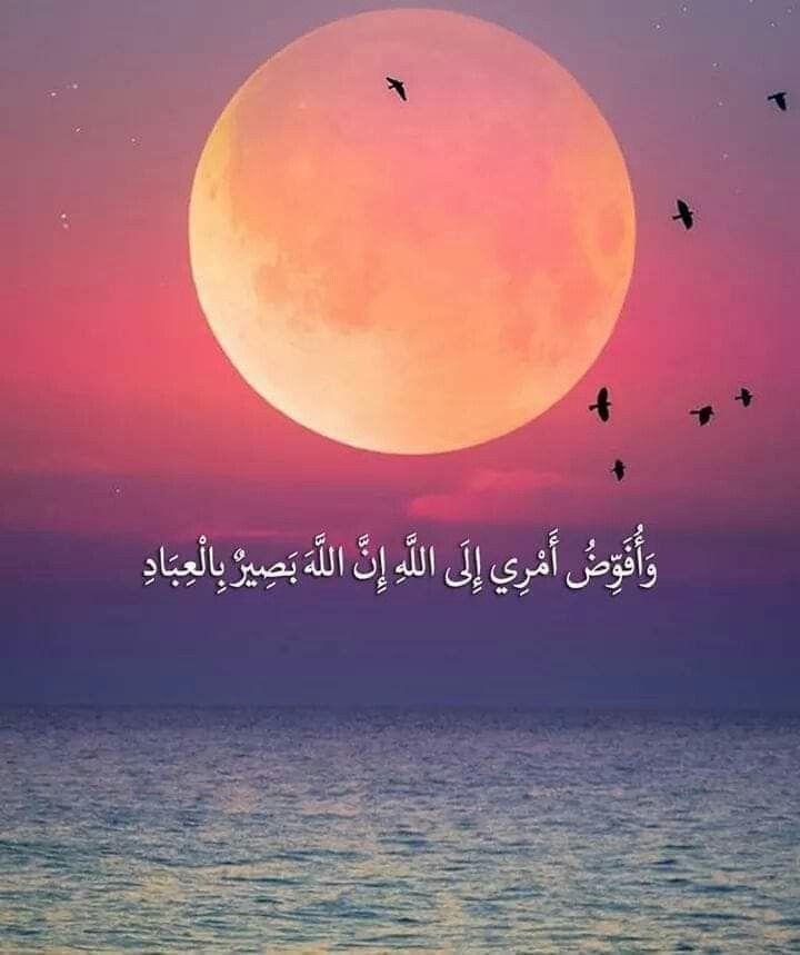 وافوض امري الي الله ان الله بصير بالعباد Islamic Pictures Noble Quran Quran Verses