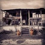 Instacanvas - Instagram artist marketplace