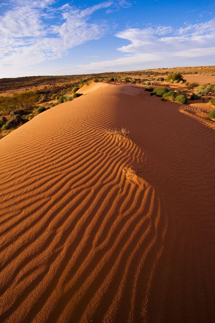 https://flic.kr/p/tQ8eEx   SIMPSON DESERT DUNE   French line track, outback
