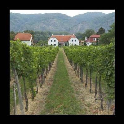 Austrian Farmhouse