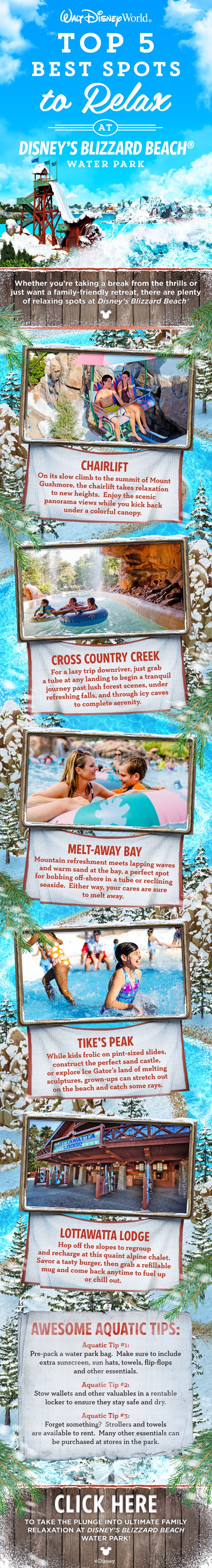 Whether you and your family are taking a break from the thrills or just want a family-friendly retreat, there are plenty of relaxing spots Disney's Blizzard Beach Water Park at Walt Disney World!