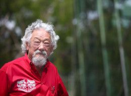 """This is terrifying!!!  David Suzuki on the issue of Fukushima - David Suzuki has issued a scary warning about Japan's Fukushima nuclear plant, saying that if it falls in a future earthquake, it's """"bye bye Japan"""" and the entire west coast of North America should be evacuated.  #fukishima #nuclear #japan"""