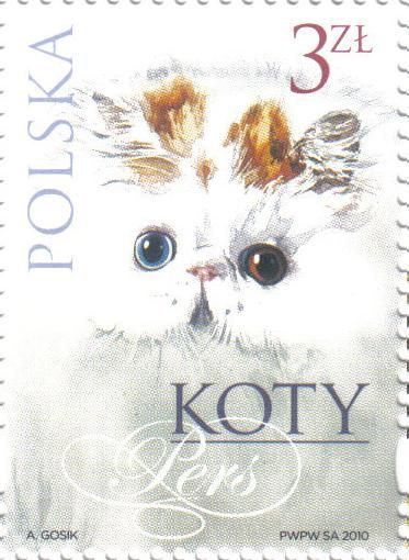 Persian Cat  | postage stamp -  Poland, 2010 | designed by Andrzej Gosik
