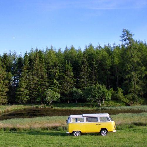 Cole Hire Self Drive Vans: Little Miss Sunshine Images On