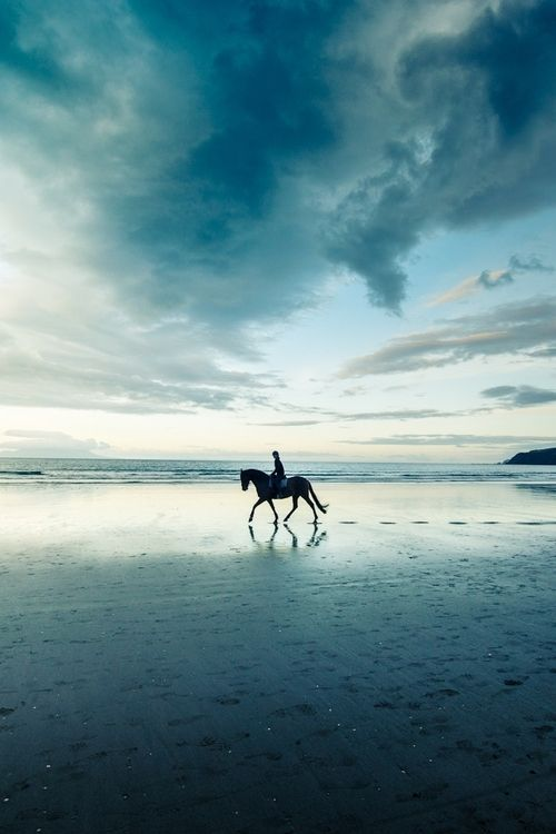 Beach riding - wish I knew where this was taken...mountains + ocean + horses
