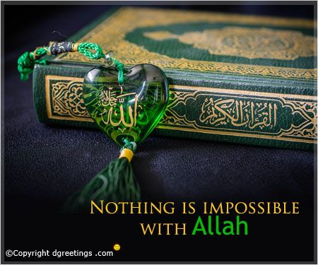 Get here a huge collection of Islamic quotes.