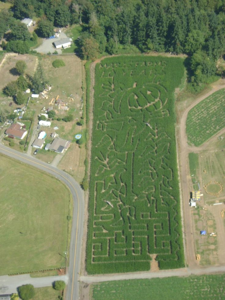 Maris Farms Corn Maze, Pumpkin Patch & Haunted Woods