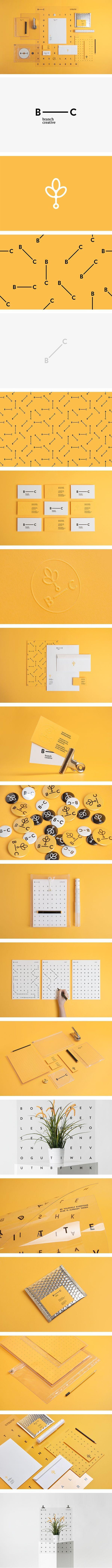 B_______C Branch Creative Branding   excellent brand identity project