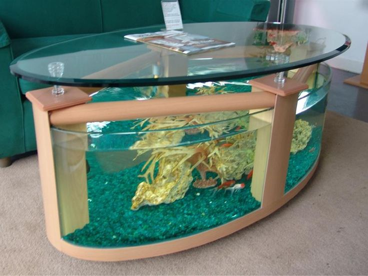 unconventional fish tank ideas | Large oval coffee table aquarium | Glass Fish Tanks