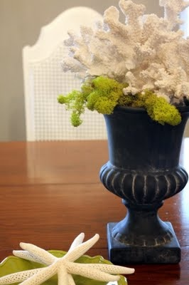 Moss and coralUsing Coral In Decor, Coral Food, Beach Decor, Beach Houses, Black Flower Painting, Beach Bouquets, Beach Ey, Foyers Tables, Coral Centerpieces