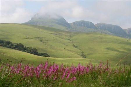 Wolkberg Wilderness Mountain Reserve, Limpopo