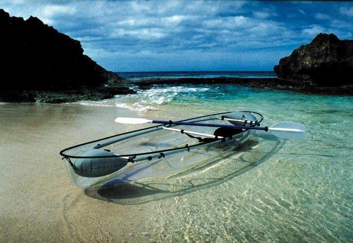 bioluminescent, bioluminescence, St. Croix, clear kayaks, sea thru, see through, kayaks, bio bay, bioluminescent bay, save the bay, save the bay st croix, bio bay usvi, st croix vi, kayaks, kayaking, tours, bioluminescent bay tours, dinofalgelattates,