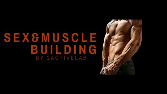 Sex And Muscle Building - 2activelab