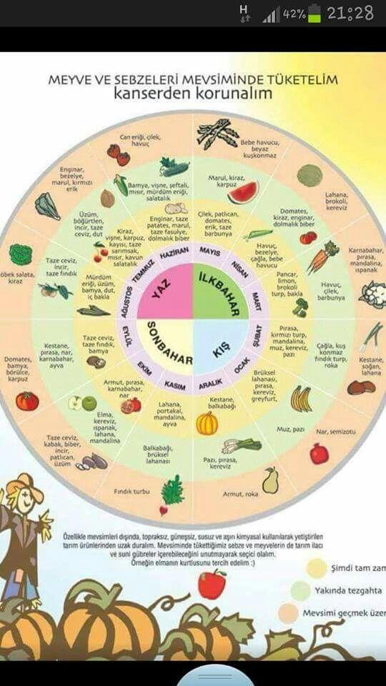 Mevsimine göre meyve sebse tüketimi