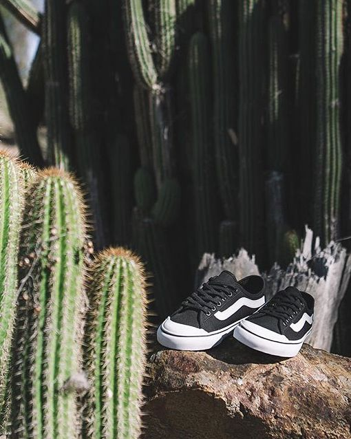 vans mens black ball sf sneakers