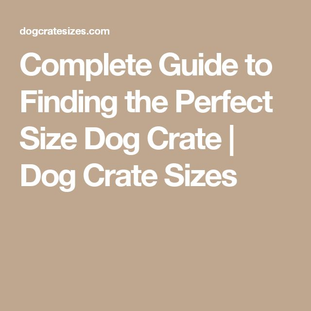 Complete Guide to Finding the Perfect Size Dog Crate | Dog Crate Sizes