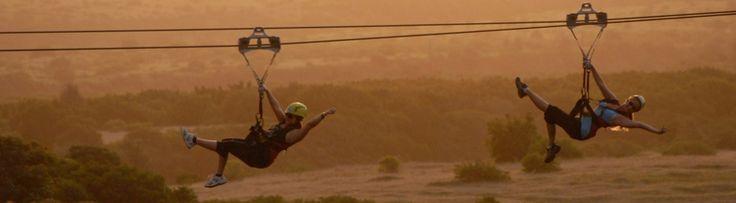 3 kilómetros de pura adrenalina en la tirolina más larga de Hawái
