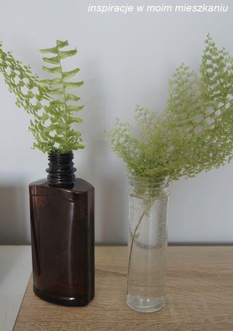 inspiracje w moim mieszkaniu: Liść paprotki, botaniczną dekoracją wnętrza