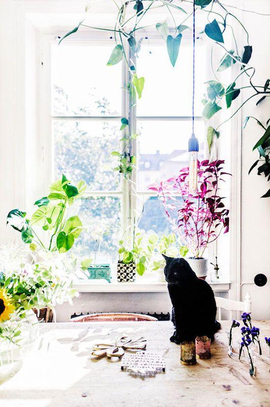 at home with elsa billgren. / sfgirlbybay