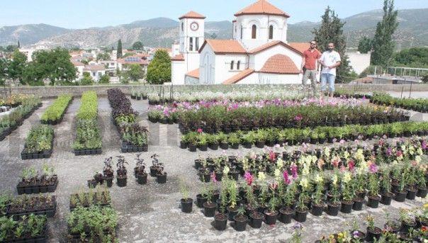 Το Μακεδονικο: Η ταράτσα γεμάτη όμορφα λουλούδια