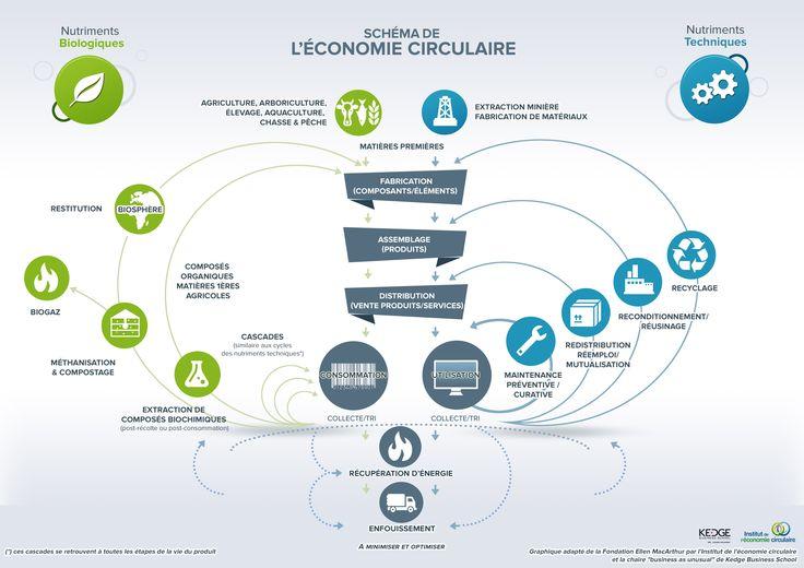Infographie économie circulaire