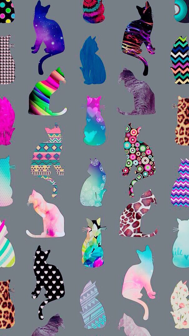 Cats wallpaper, background, colourful, colorful, iPhone