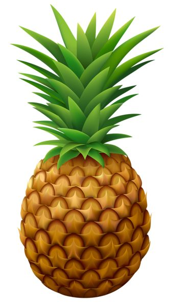 Pineapple PNG Vector Clipart Image