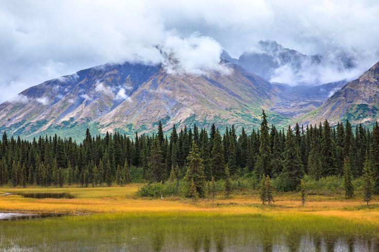 Alaska: una natura maestosa e incontaminata dominata da imponenti montagne, ghiacciai spettacolari e fiordi silenziosi...